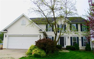 Copley Single Family Home For Sale: 4690 Quincy Dr