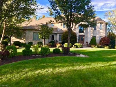 Solon Single Family Home For Sale: 38375 McDowell Dr