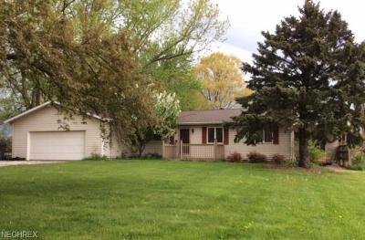 Wadsworth Single Family Home For Sale: 1073 Fixler Rd