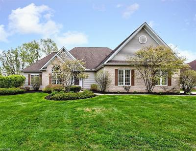 Concord Single Family Home For Sale: 7555 Hunting Lake Dr
