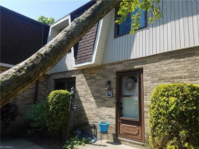 Eastlake Condo/Townhouse For Sale: 35953 Lake Shore Blvd #D3