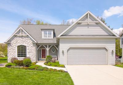 Olmsted Falls Single Family Home For Sale: 9050 Lake View Dr