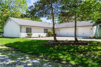 Strongsville Single Family Home For Sale: 9485 North Marks Rd