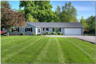 Geauga County Single Family Home For Sale: 1233 Bell Rd