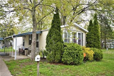 Single Family Home For Sale: 30 Flagler