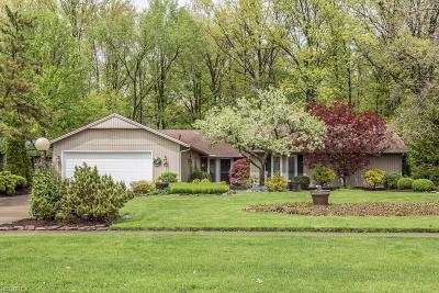 Strongsville Single Family Home For Sale: 10726 Gate Post Rd