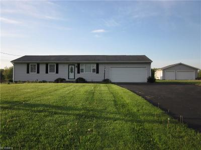 Single Family Home For Sale: 9331 Newton Falls Rd