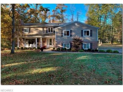 Summit County Single Family Home For Sale: 932 Westhaven Dr