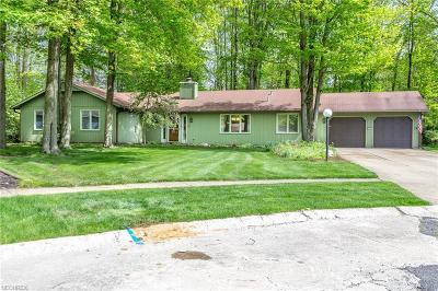 North Ridgeville Single Family Home For Sale: 32551 Sweetbriar Ct