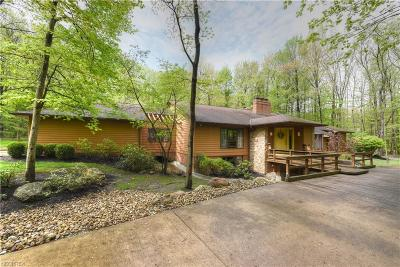 Lake County Single Family Home For Sale: 38460 Chimney Ridge Trl