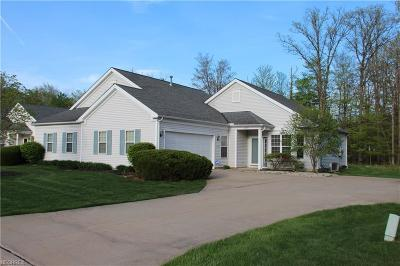 Aurora Single Family Home For Sale: 10591 Crossings Dr