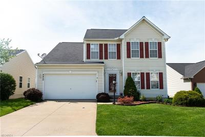 North Ridgeville Single Family Home For Sale: 8450 Antlers Trl