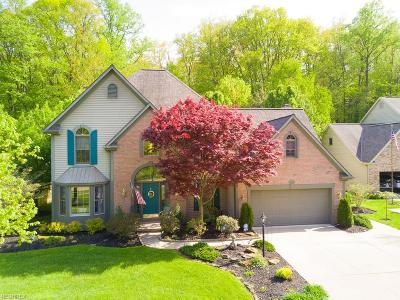 North Olmsted Single Family Home For Sale: 30411 Oakwood Cir