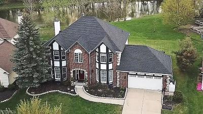 Echo Lake Single Family Home For Sale: 19864 Stoughton Dr