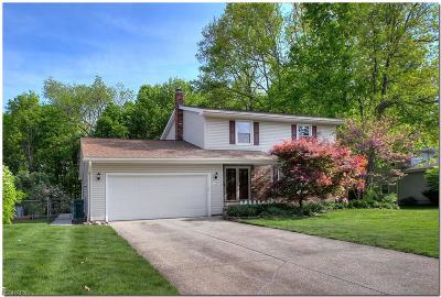 Twinsburg Single Family Home For Sale: 1699 Laurel Dr