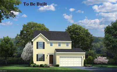 Lake County Single Family Home For Sale: 425 South Ashwood Ln