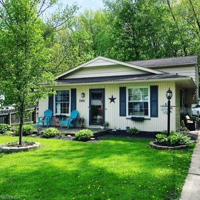 North Ridgeville Single Family Home For Sale: 5461 Pleasant St