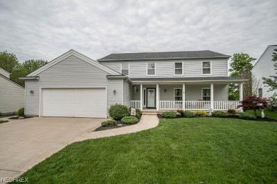 Strongsville Single Family Home For Sale: 13170 Fairwinds Dr