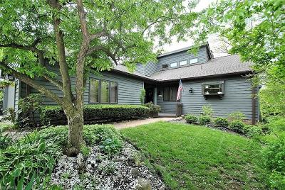 Chagrin Falls Condo/Townhouse For Sale: 306 Overlook Brook Dr