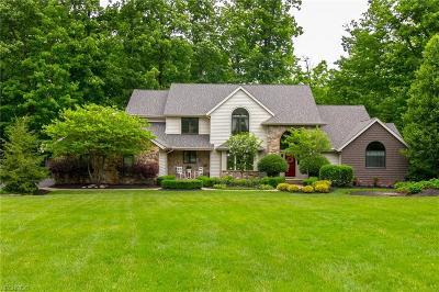 Kirtland Single Family Home For Sale: 9057 Regency Woods Dr