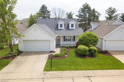 Strongsville Single Family Home For Sale: 19285 Lauren Way
