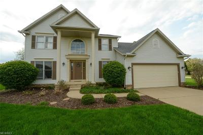Copley Single Family Home For Sale: 682 Redfield Ln