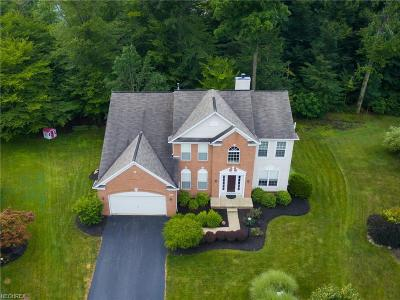 Chagrin Falls Single Family Home For Sale: 111 Renaissance Ct