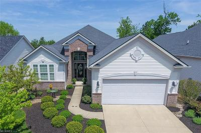 Strongsville Single Family Home For Sale: 18474 Bunker Hill Dr