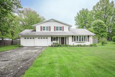 Lake County Single Family Home For Sale: 7801 Chillicothe