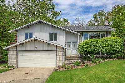 Brecksville Single Family Home For Sale: 2685 Knolls Ln