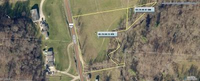 Muskingum County Residential Lots & Land For Sale: 9195 Center Rd