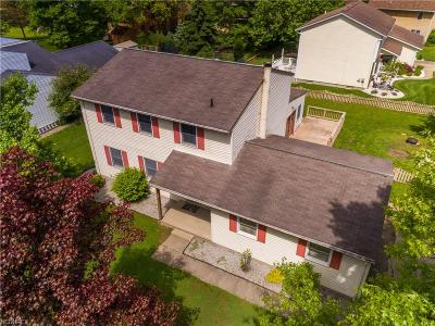 Wadsworth Single Family Home For Sale: 398 Wolf Ave