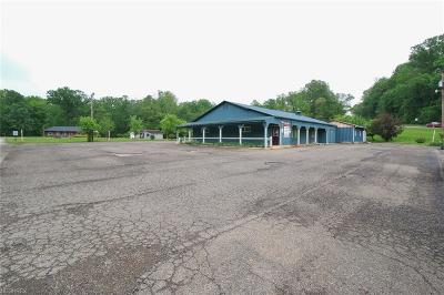 Muskingum County Commercial For Sale: 5350 Dillon Hills Dr