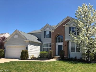 Avon, Avon Lake Single Family Home For Sale: 2727 Saddle Creek