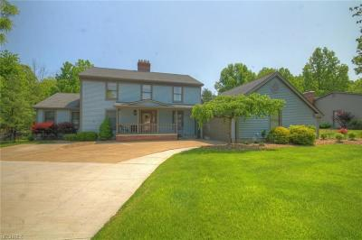 Canfield Single Family Home For Sale: 351 Shadydale Dr
