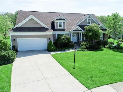 Solon Single Family Home For Sale: 37366 Wexford Dr