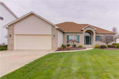 Strongsville Single Family Home For Sale: 17272 Greenwood Dr