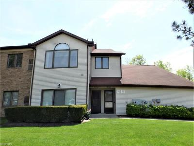 Lake County Condo/Townhouse For Sale: 7179 Village Dr