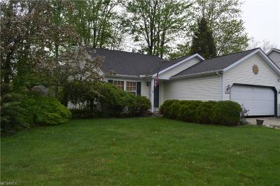 North Ridgeville Single Family Home For Sale: 5982 Eastview Ave