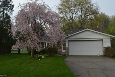North Ridgeville Single Family Home For Sale: 5315 Barton Rd