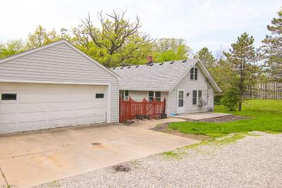 Strongsville Single Family Home For Sale: 14140 Prospect Rd