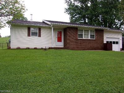 Zanesville Single Family Home For Sale: 3485 Thompson Run Rd