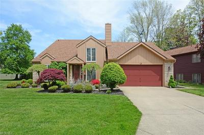 Rocky River Single Family Home For Sale: 21742 Gatehouse Ln
