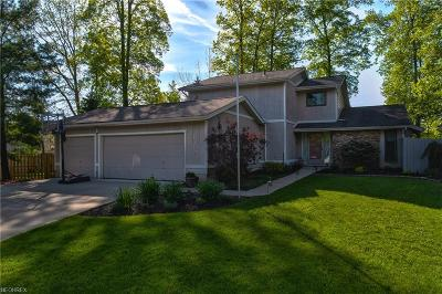 Strongsville Single Family Home For Sale: 20109 Driftwood Ct