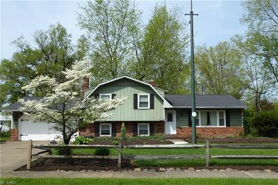 Mentor Single Family Home For Sale: 6140 Maplewood Rd