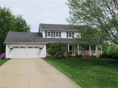 Solon Single Family Home For Sale: 6275 Cloverly Dr