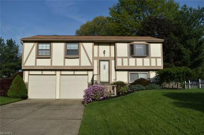 Twinsburg Single Family Home For Sale: 10392 Belleau Dr
