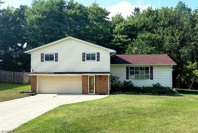 Strongsville Rental For Rent: 18160 Meadow Ln