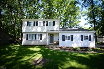 Canfield Single Family Home For Sale: 236 Bradford Dr