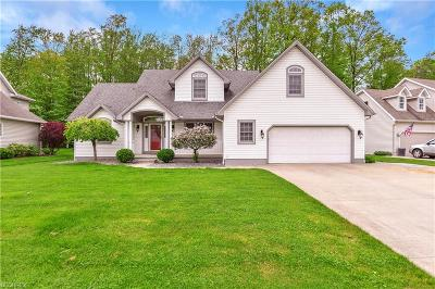 Austintown Single Family Home For Sale: 1624 Eastwind Pl
